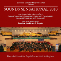 Sounds Sensational 2010 CD cover